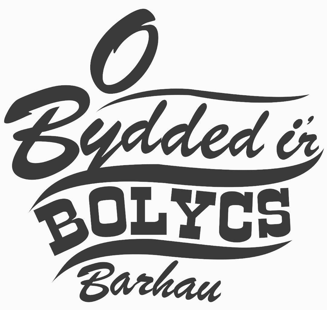 bolycs cymraeg image